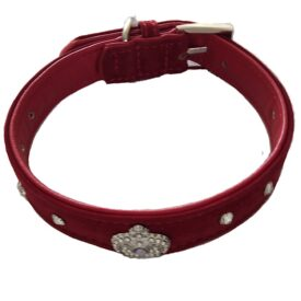 red suede dog collar