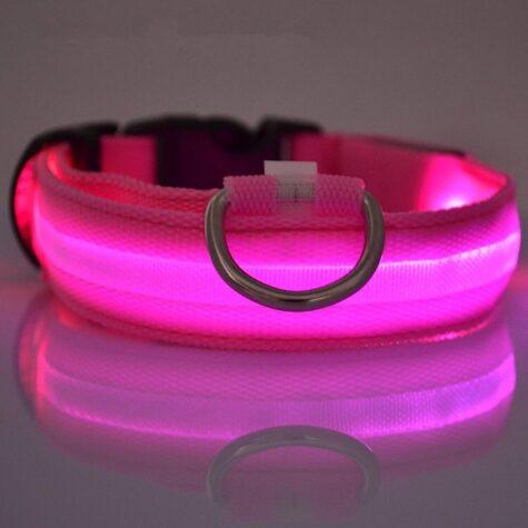 Pink LED Dog Collar
